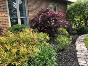 Landscape Design by Peterborough Landscape Supply