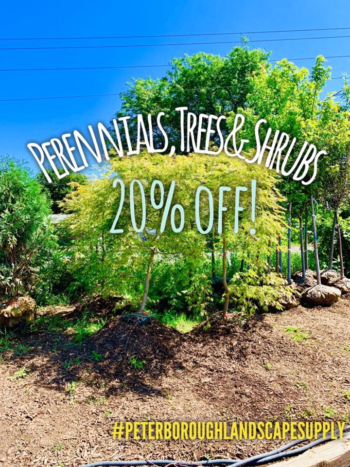 Peterborough Landscape Supply Perennials, Trees, & Shrubs special